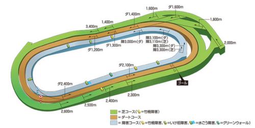 東京競馬・完全読本(芝)・東京競馬場コース立体図.PNG